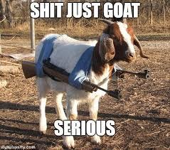 goat gun.jpg